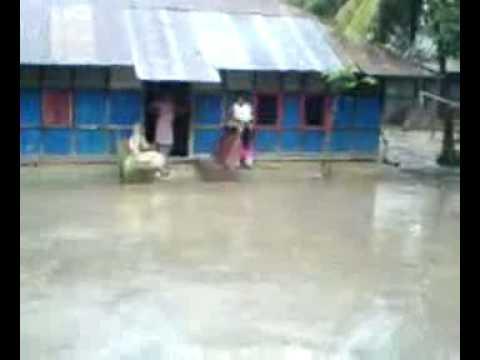 Mojnu fearless of rain