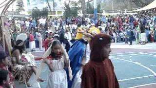 Carnaval Arbolado parte2