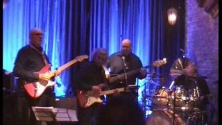 Johnny Guitar - The Revivals