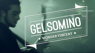 Wonder Vincent - Gelsomino (Official Video)