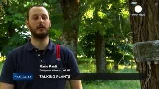 Talking plants - Futuris