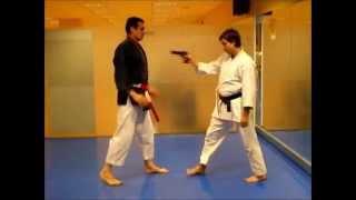 Nihon Tai-Jitsu  - Budotai  - Javier Moreno