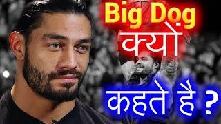 Real Reason Why Roman Reigns is Called Big Dog in WWE -  बिग डॉग का क्या मतलब हैं