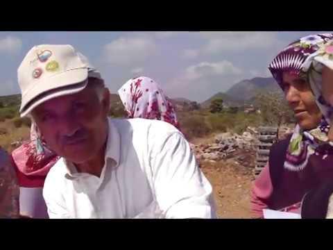 ANTALYA TİCARET BORSASI  Köyler'de Alanya Güzelbağ ve Bayır Köyleri