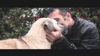 Oktay Üst - 2015 Efil Efil (Official  Video)
