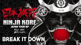 Ninja Kore - Break It Down (Original Mix)