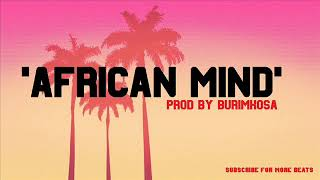 Instrumental | 'African Mind' Afro Guitar Rnb Hiphop Dance Type Beat