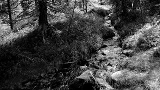 Relaxing Nature Sounds - Mountain Stream Sound Effect
