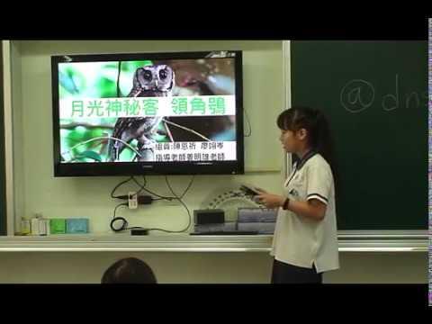 探索領角鴞 - YouTube