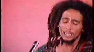 Bob Marley & the Wailers - Roots Rock Reggae