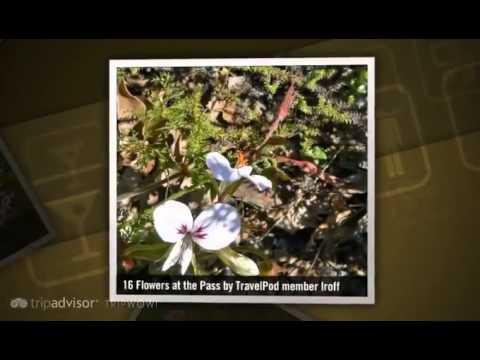 """""""Cape Winery Tours – Franschoek, Stellenbosch,"""" Lroff's photos around Franschoek, South Africa"""