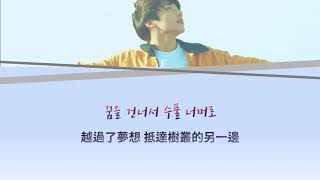 韓中字|Euphoria : Theme of LOVE YOURSELF 起 Wonder - Jungkook(BTS) part.