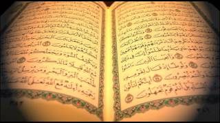 Hafiz Aziz Alili - Kur'an Strana 245 - Qur'an Page 245