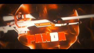 Intro #56 Panda v3