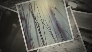 Ορφέας Περίδης cover - Για Πού Τό 'βαλες Καρδιά Μου