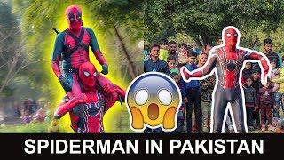 Desi Spiderman Surprises Public in Pakistan
