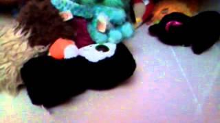 Histórias dos bichinhos animados 2345