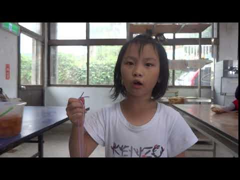 平面貓頭鷹學習感想3 - YouTube