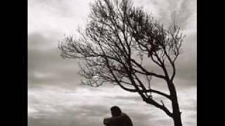 """""""Alone in the ring """" - Bill Conti . (Matteo Seghetti cover)"""