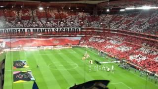 Super Dragões - SL Benfica 1-1 FC Porto - Momentos iniciais