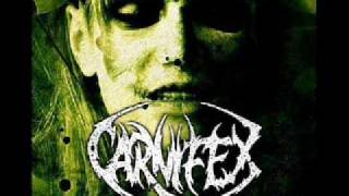 Carnifex - suffering (intro)