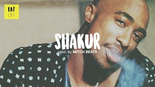 (free) 90s Old School Boom Bap type beat x Hip Hop instrumental | 'Shakur' prod. by MITCH BEATS