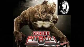 kumbia de la awelita kn wepa sonido pitbull feat dj sackz