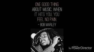Bob Marley Babylon System Remix