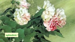 """""""Nessun Dorma"""" ( Giacomo Puccini) - Turandot - [Luciano Pavarotti]"""