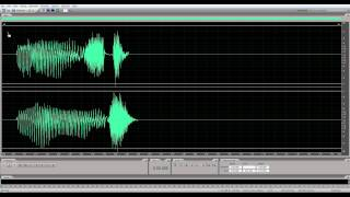 Adobe Audition CS5.5 Left / Right Channel Select