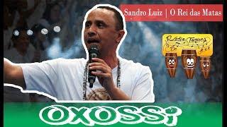 Ponto Oxossi   O Rei das Matas   Sandro Luiz  13° Procissão de Xangô