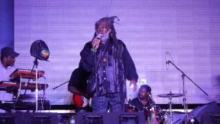 Johnny Clarke - African Roots - Live In Toronto - Rastafest 2015