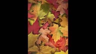 Fondo de pantalla para android otoño