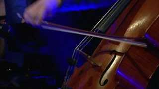 VIRUS 12 december 2013: Brackman Trio - Leonard Bernstein