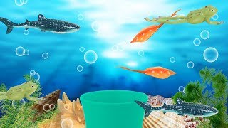 Surprise mug is making sharks!! kids counting number, sharks names | Baby And Toys