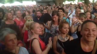 CSD 2017 Alternative Zigeunerfestival Köln Rumba Gitana Flamenco, Latin, Full HD for iphone