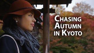 Beautiful Kyoto: The Most Amazing Autumn Momiji Leaves in Kyoto 京都の美しい紅葉