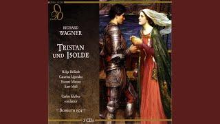 Wagner: Tristan und Isolde: O diese Sonne! (Act Three)