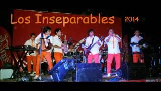 Amor total - Los Inseparables 2014