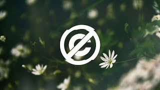 Ikson - Bloom — Vlog No Copyright Music / Alternative