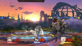 Elextro Bowser vs Rhindle Robin