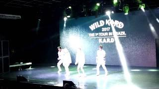 [FANCAM] 20170702 WILD K.A.R.D Tour in Brazil - Sim ou Não Cover (By Anitta)
