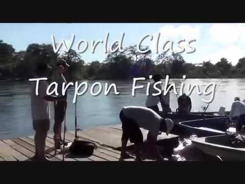 Tarpon fishing Rio San Juan 2012