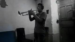 Despacito🎵 Cover (Guitarra-Trompeta)