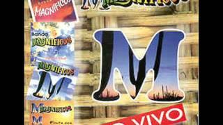 BANDA MAGNIFICOS - VIVENDO POR VIVER