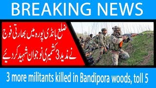 3 more militants killed in Bandipora woods, toll 5   21 Sep 2018   92NewsHD