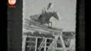 Huaso el caballo campeon
