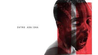 Residente - Intro ADN / DNA (Audio)