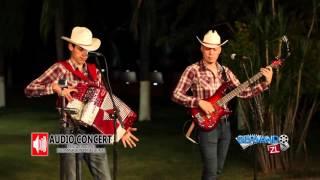 Los Amigueros De La Sierra - El Tecnico (En Vivo 2016)