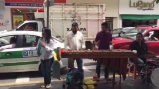 Despacito versión Marimba 💃🏾